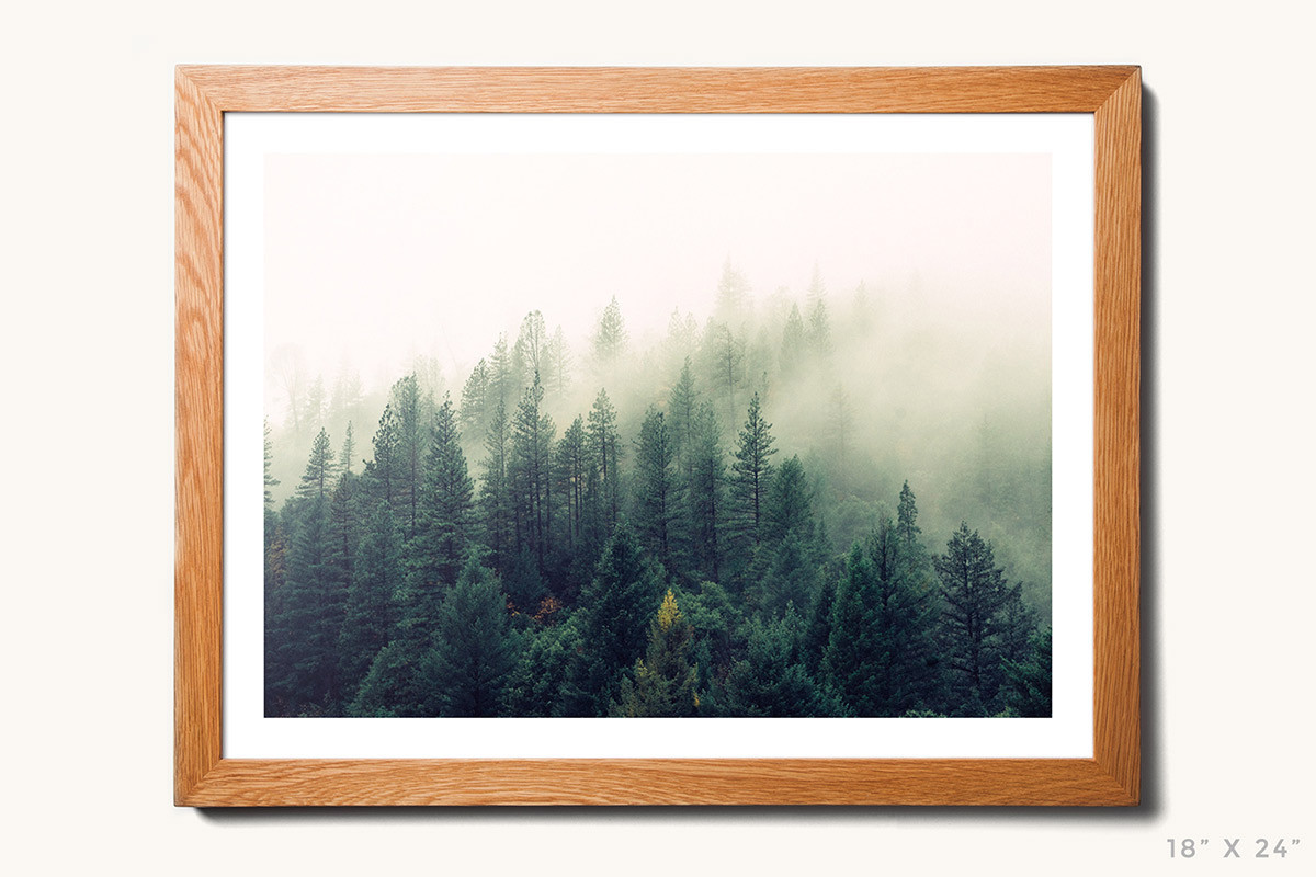 Tanner Hardwood Wall Frame