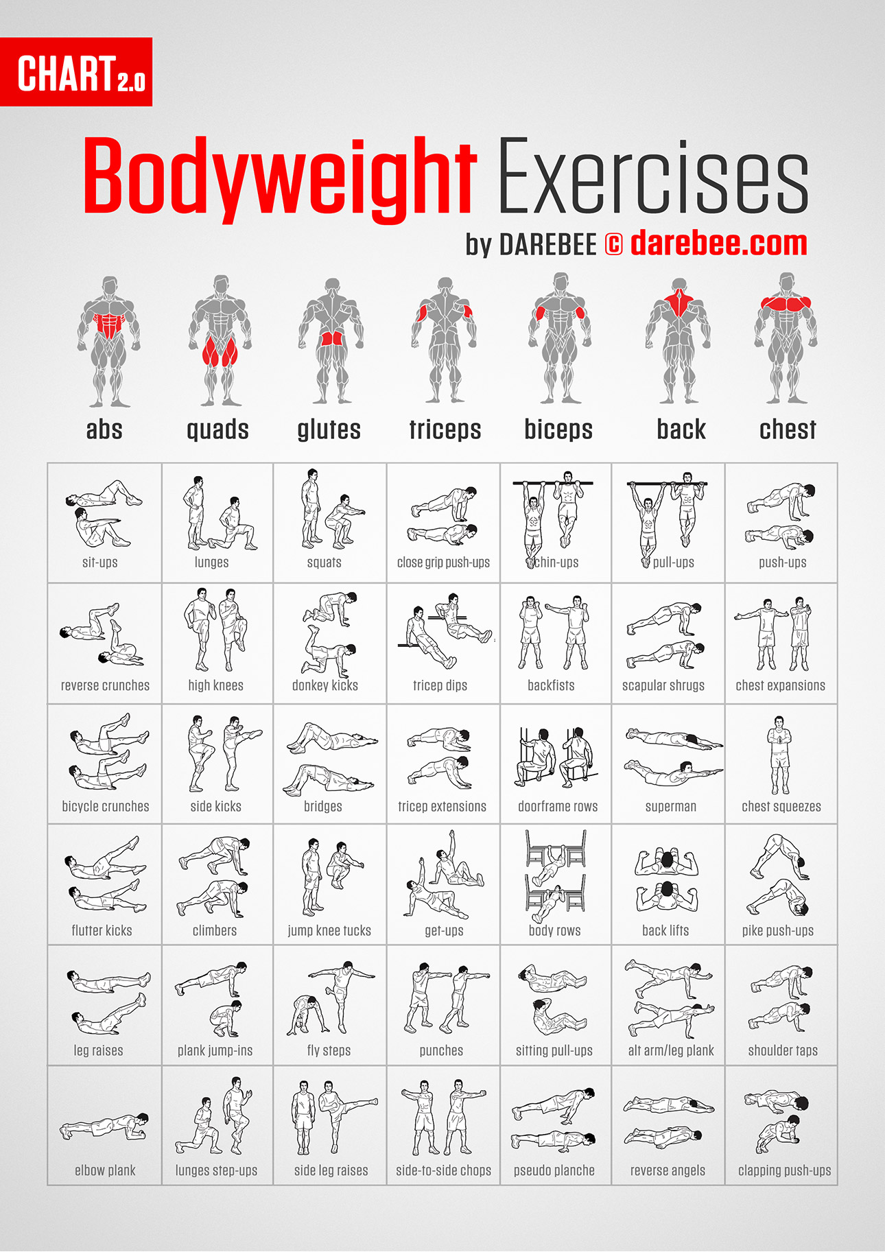 awesome chart for finding bodyweight exercises for every body part